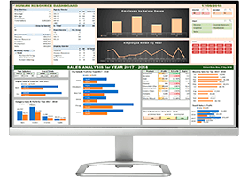 Interactive Excel Dashboard